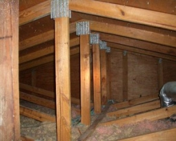 Windstorm Mitigation Inspection Attic-Access